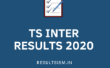 TS INTER RESULTS 2020
